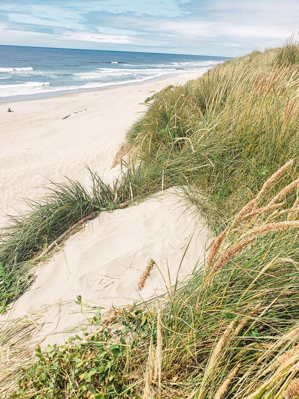 oregon sand dunes florence