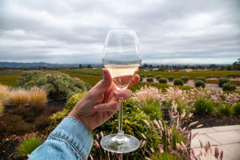 gloria ferrer winery sonoma