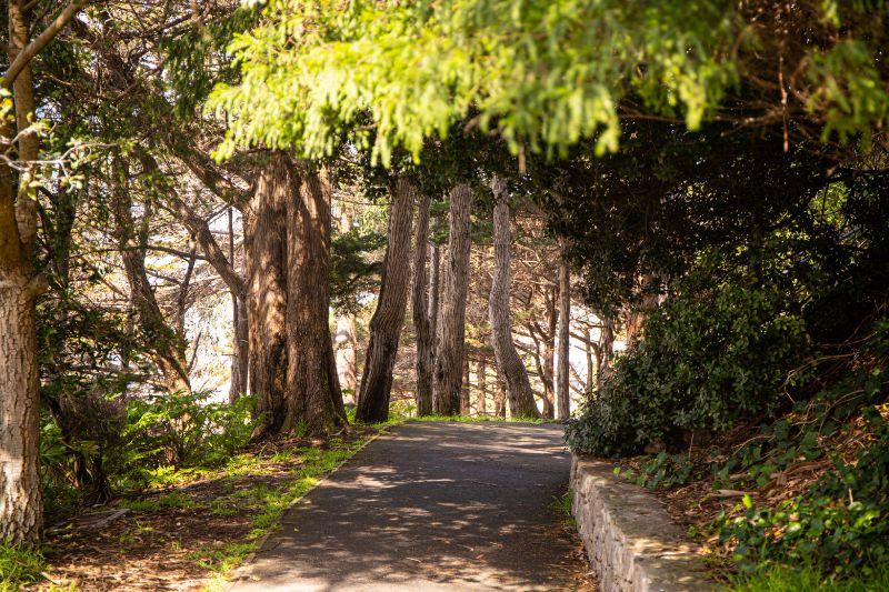 pioneer park san francisco california
